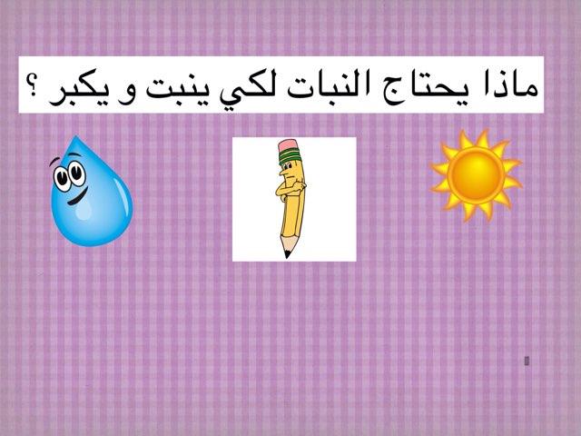 Game 7 by Bashaer Almulla