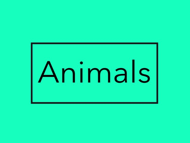 About animals has puzzles and sound. by Brooklyn Mulder