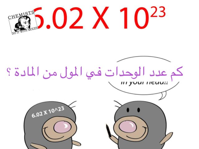 المول  by Hoda Elmaghrpy