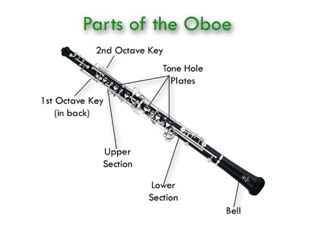 Parts of a Clarinet by Mason Cleveland