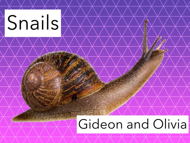 Gideon & Olivia's  Snail Game by KG 115