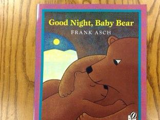 Good Night , Baby Bear by Amy Boehman