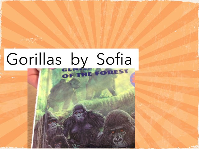 Gorillas By Sofia by Leslie Roberts