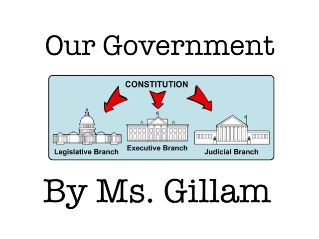 Government: Who Takes Care Of What! by Amy Gillam