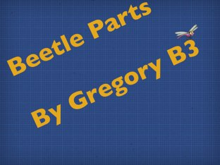 Gregory's Beetle Project by Vv Henneberg