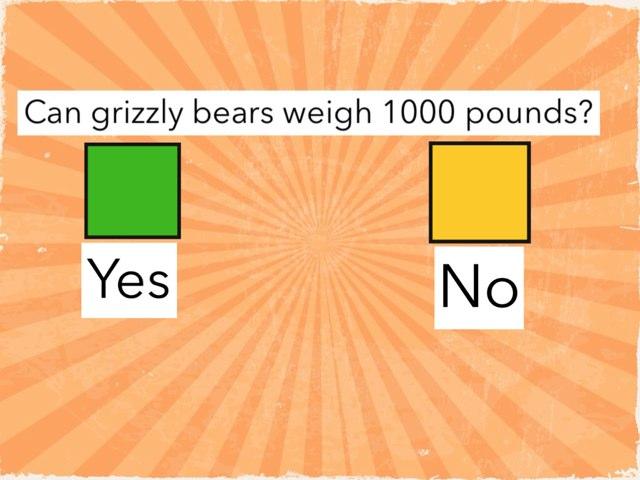 Grizzlies  by Heather Davis