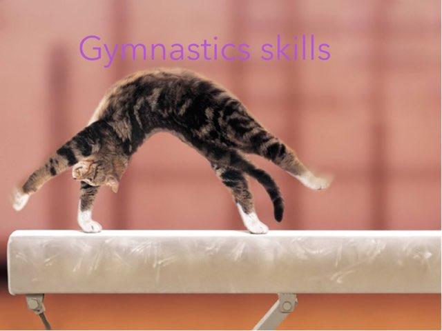Gymnastics Skill by Dana Hatle (really account)
