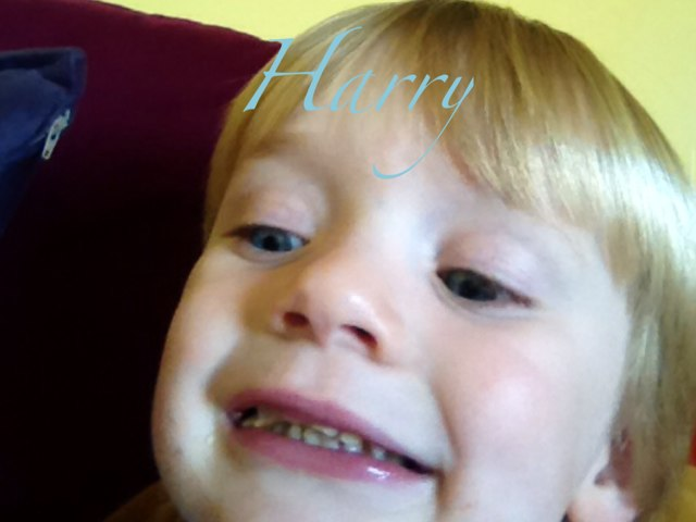HARRY by Aileen Glennon