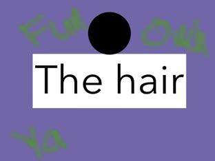 Hair by Tiffany Day