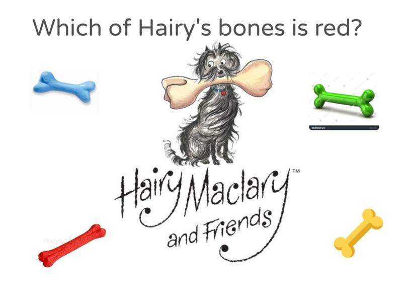 Hairy Ms colour bone game by Janie Turton