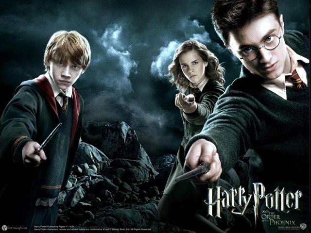 Harry Potter by Marina Bernardo