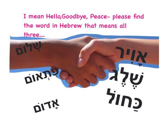 Hebrew Concepts by Morah Wilma