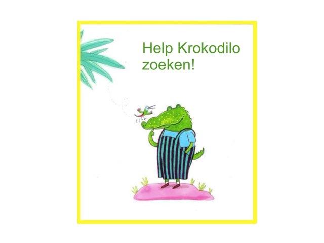 Help Krokodilo Zoeken by Febe Van Landegem