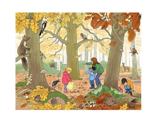 Herfst: Woordenschat by Marieke Vaessen