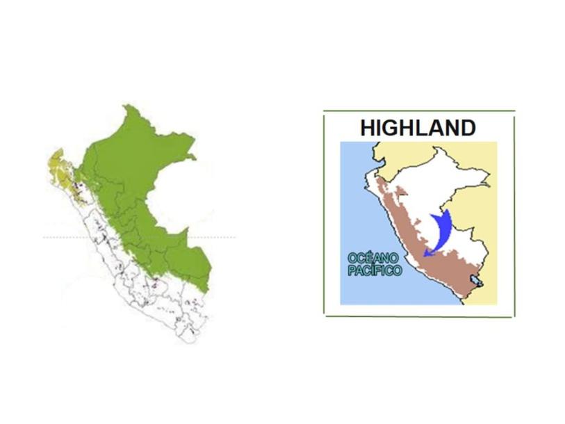 Highland by ROX ALTAMIRANO