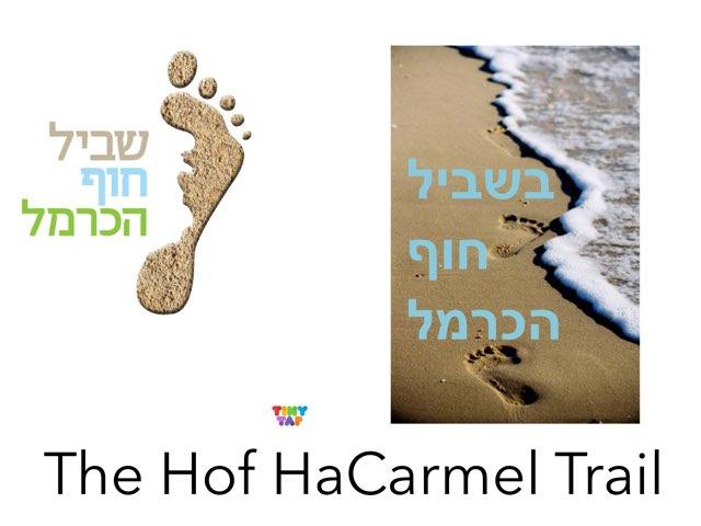 Hof Carmel  Trail by Karen stanger