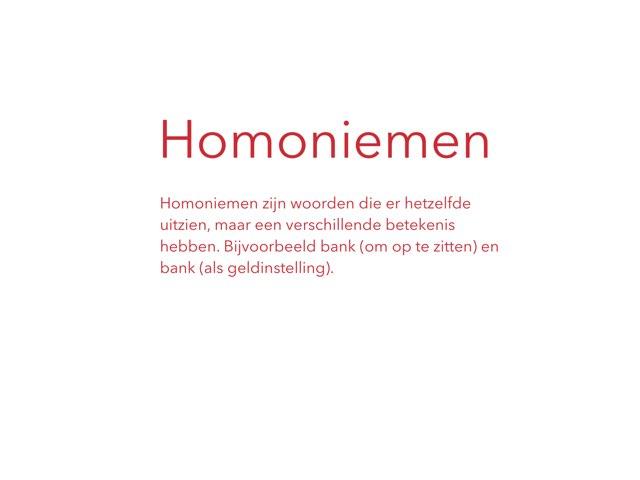 Homoniemen by Annemarijke Andriesse