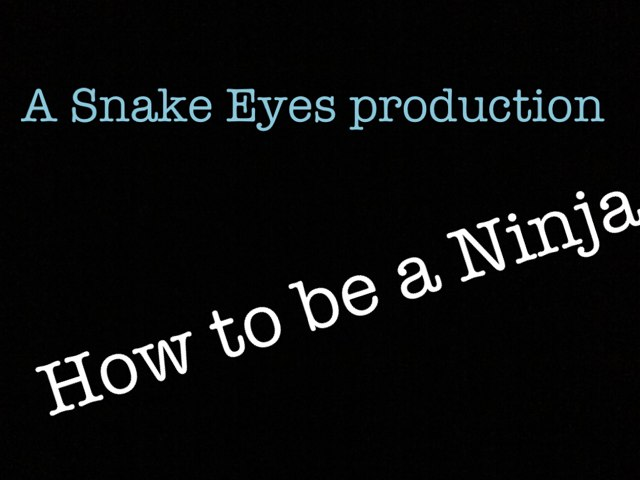 How To Be A Ninja by Snake Eyes