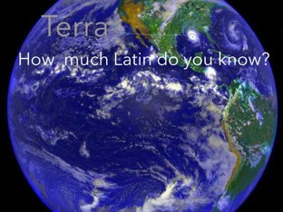 How much Latin do you know? by Fiona Crean