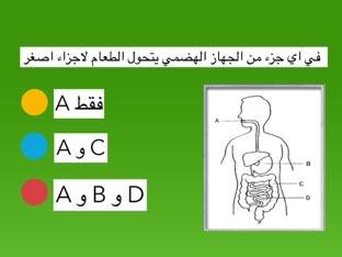 Human Body 2 by Abla amoon