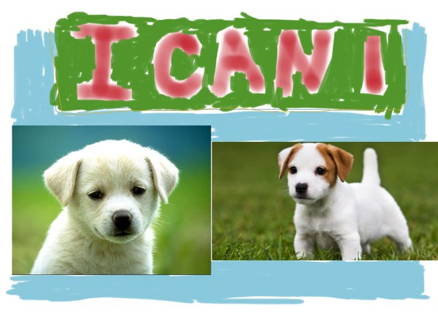 I Cani by Carmelo Marchese