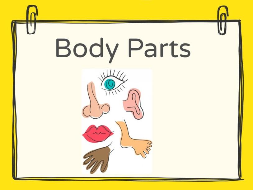 ID Body Parts (Fof2) by Camy Gutschenritter