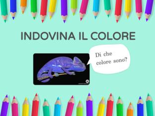 INDOVINA IL COLORE! by Adelina Sormonto