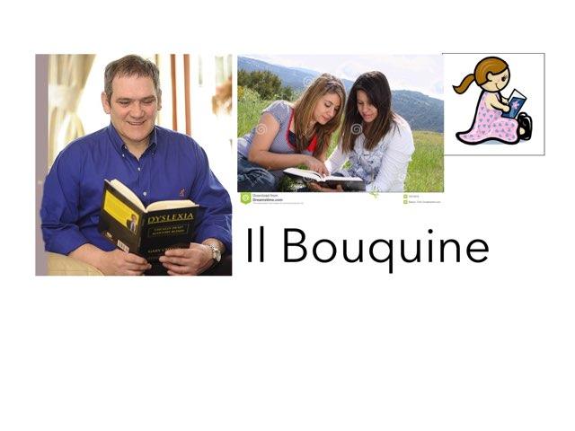 Il Bouquine  by Bryson Hyska