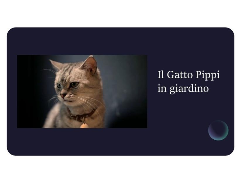 Il gatto Pippi in giardino by Giuseppina Castellano