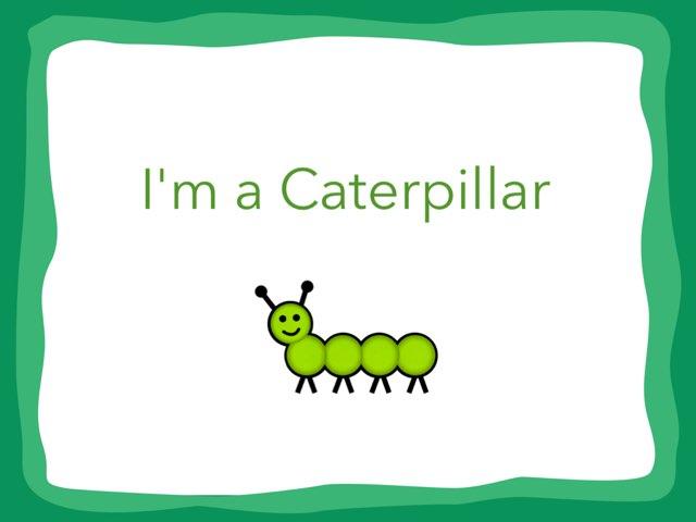 I'm A Caterpillar Vocabulary by Jennifer Klostermann
