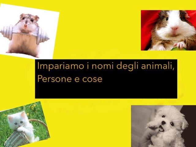 Impariamo I Nomi Degli Animali,persone E Cose by Irina Nazarov