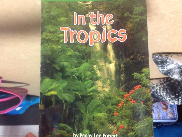 In The Tropics With Brooke by Kinderone wolcott