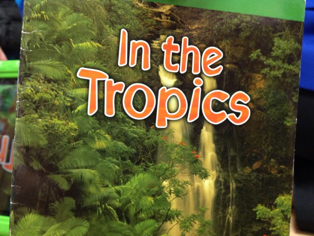 In The Tropics With Evelyn by Kinderone wolcott