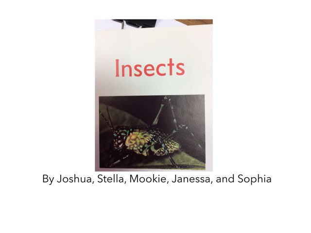 Insects. By The Grapes by Keegan scelia