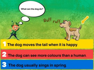 Interesting Facts About Pets  by Maria Ponsoda