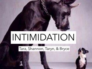 Intimidation by Tara  Johnston