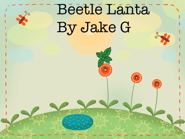 Jake's Beetle Project by Vv Henneberg