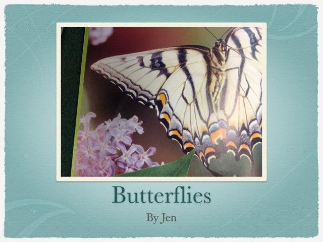 Jen's Butterflies by P302 SAS