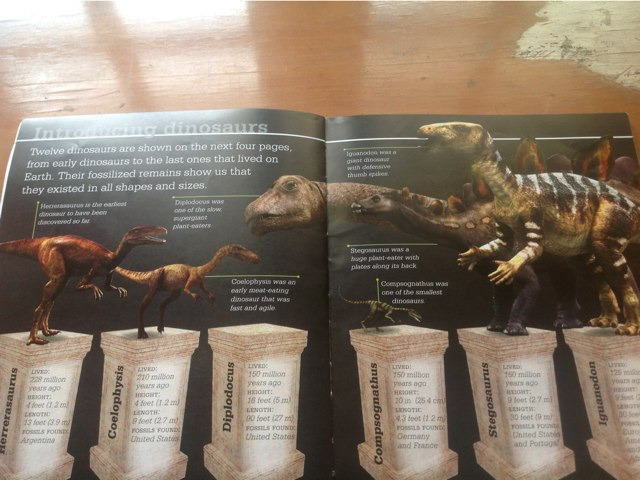 Join The Dinosaurs Back to Their Home by Anurag Simha