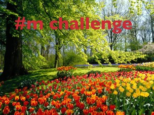 Joining To The #m Challenge by Nada Alalawi