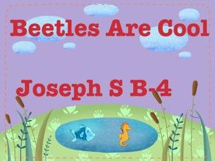 Joseph,s Beetle Project by Vv Henneberg