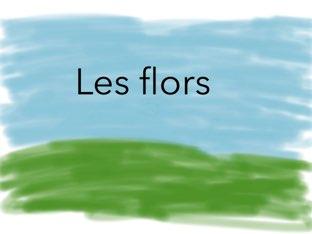 Es un treball de les flors les de interior i les de exterior i les seves parts by Alona yefimova terebenets