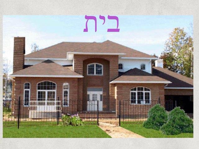 Casa by Sharon Lulka