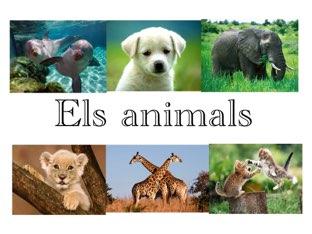 Es una presentació dels animals  by Alona yefimova terebenets