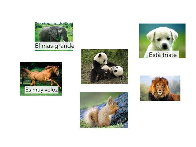 Reconocer animales por sus características by Curso CFTIC