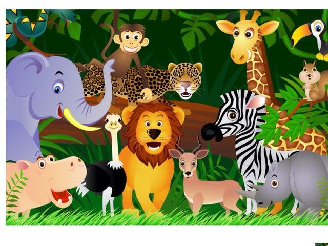 Jungle Animals by Erin Wierzbinski