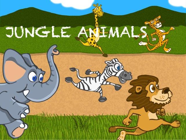 Jungle Animals by Marina Rosón Melcón
