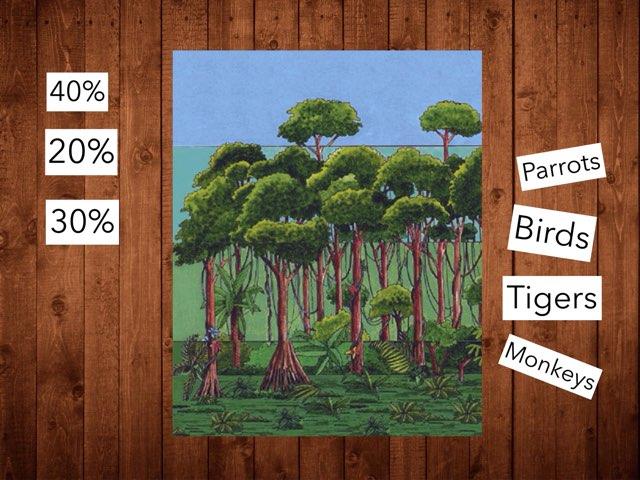 Junglemania by Y6F Y6F