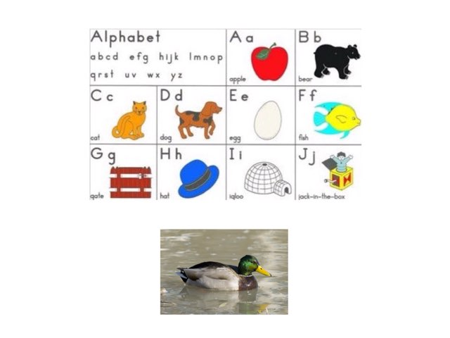 K: Matching Initial Sounds by Frazzled Teacher