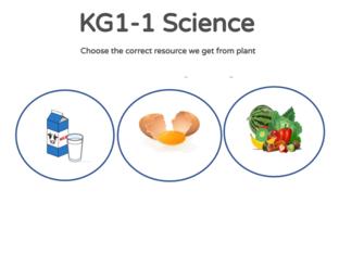 KG1-1 Science 11/04/2021  by Vantage KG